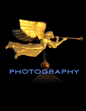 Photography Gallery Link